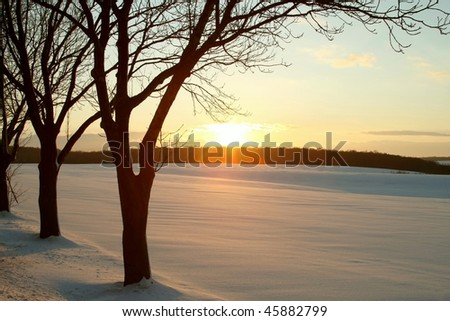 Winter sunset over the snow covered field with trees in the foreground. - stock photo