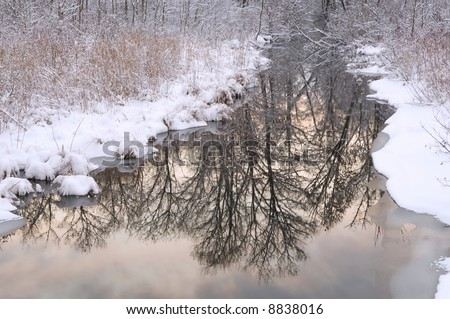 Winter, Tamarack Creek with reflections of sky and bare trees at sunrise, Michigan, USA - stock photo