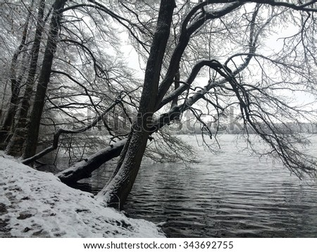 Winter Time - stock photo