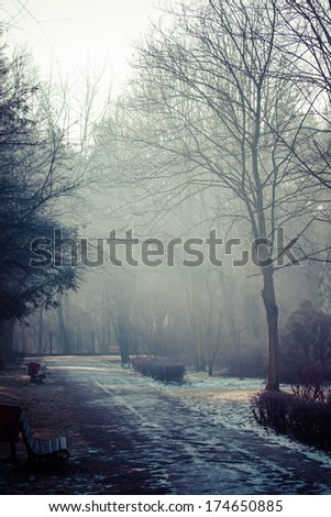 Winter time in local park, Poland.