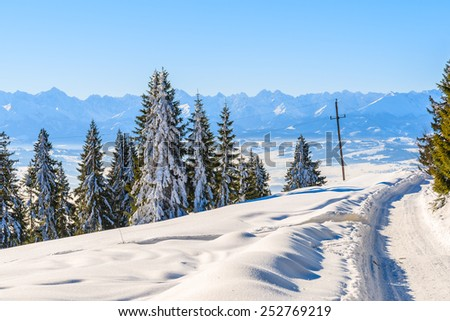 Winter trail in Gorce Mountains and panorama of Tatra Mountains in background, Poland