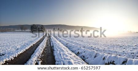 Winter trails - stock photo