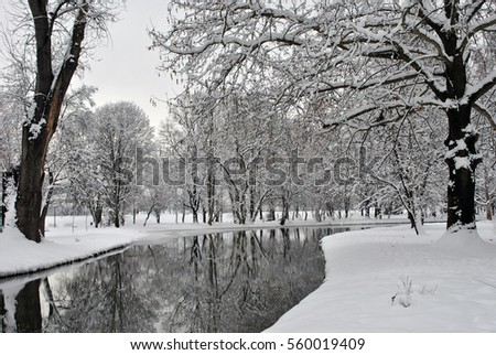 Winter trees and stream in a city park; winter landscape.
