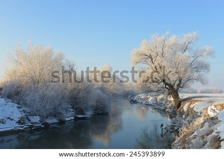 winter trees, river - stock photo
