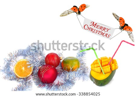 Winter tropical holidays (Christmas and New Year) background with red baubles,sweet exotic juicy fruit of citrus and mango.Ladybugs greets Merry Christmas. Juicy fruits for holiday drinks  - stock photo