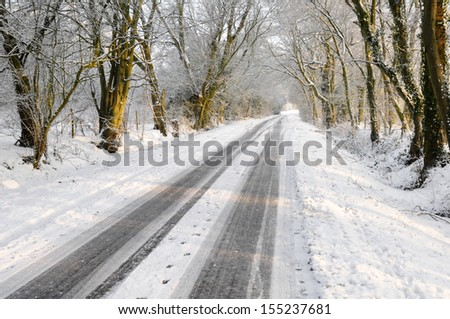 Winter vehicle tracks on snow covered country lane through woodland trees - stock photo