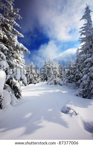 winter view in high mountain - stock photo