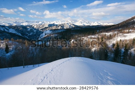 Winter view in slovenian alps