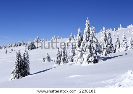 winter view of snow covered mountain and trees - stock photo