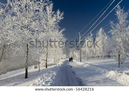 Winter walk - stock photo