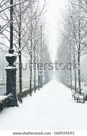 winter walkway - stock photo