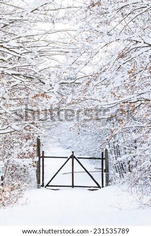 winter wonder land - snowy passage - stock photo