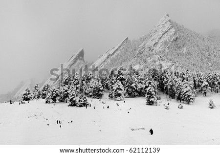 Winter Wonderland - stock photo
