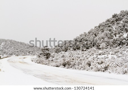 Winter wonderland near Steamboat Springs, Colorado. - stock photo