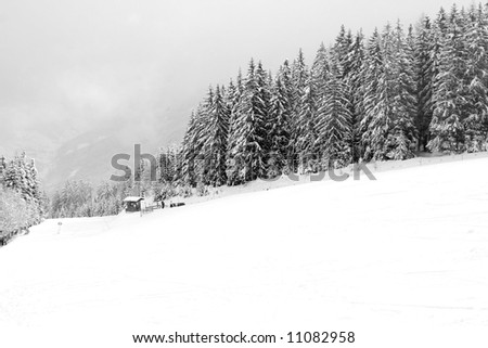 Winters snow blizzard in Swiss Alps mountains