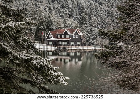 wintertime - stock photo