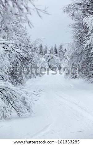 Wintry countryside road and hoar-frost on trees in winter. Focus at the distance - stock photo