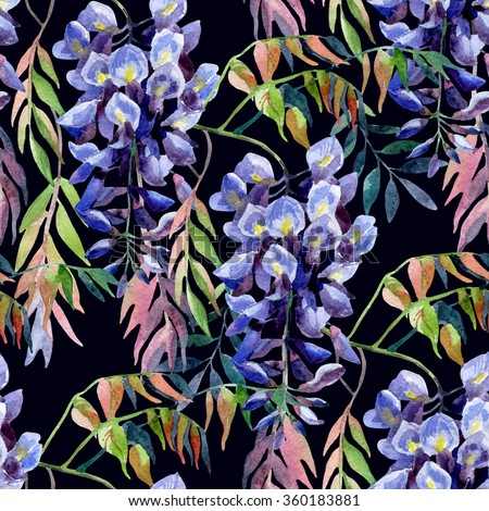 Wisteria flower. Watercolor wisteria seamless pattern. Hand painted illustration on black background - stock photo