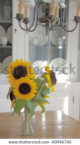 With a china hutch in the background and a chandelier overhead, the arrangement of sunflowers in a simple jar contrasts beautifully - stock photo