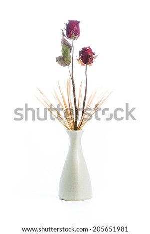 Withered roses in vase on white background - stock photo