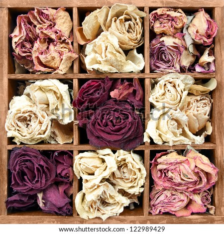 Withered roses in wooden box - stock photo