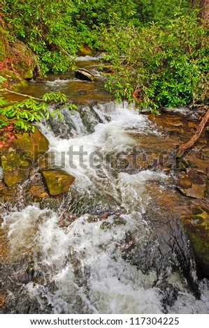 Wolf Creek in the Smoky Mountains - stock photo