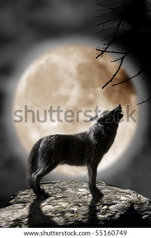 wolf howling to the moon - stock photo