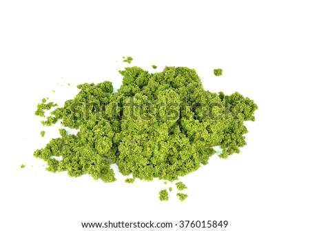 Wolffia globosa or Fresh water Alga, Water Meal, Swamp Algae. - stock photo