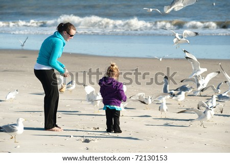 woman and child feeding birds at the beach - stock photo