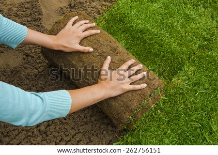 Woman applying turf rolls in the backyard - stock photo