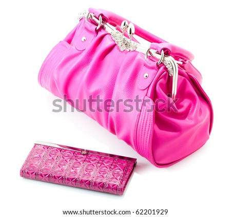 woman bag isolated on the white background - stock photo
