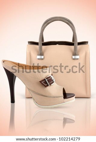 woman bag with shoe, accessory concept - stock photo