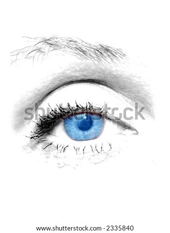 Woman blue eye on white background