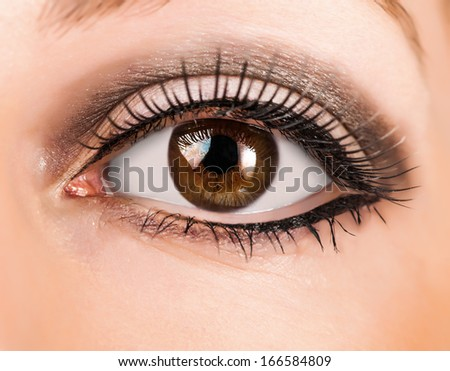 woman brown eye with false  extremely long lashes  - stock photo