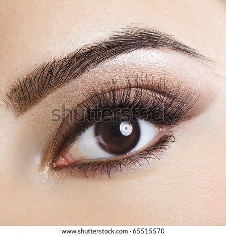 Woman brown eye with pastel color makeup and long eyelashes - stock photo