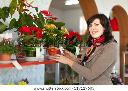 Woman chooses begonia in a flower shop