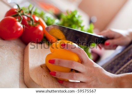 Woman chopping vegetables in the kitchen - stock photo
