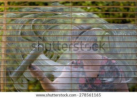 Woman cleaning a window from the outside, first making soap trails before drying them with a wiper, much room for copy space - stock photo