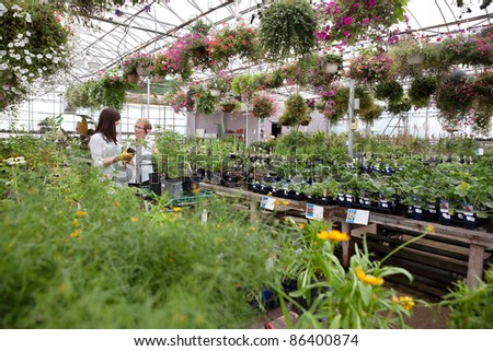 Woman communicating with female worker while buying plant