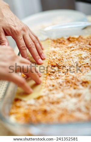 Woman cooking lasagna, arranging the pasta in a tray with filling - stock photo