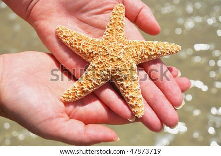 woman cradles starfish in her hands above surf - stock photo