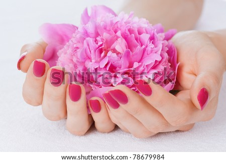 Woman cupped hands with manicure holding a pink flower - stock photo