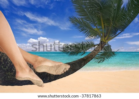 Woman Dangling Her Feet on a Palm Tree in Hawaii - stock photo
