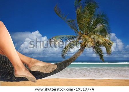 Woman Dangling Her Feet While Sitting on a Palm Tree Overlooking the Ocean - stock photo