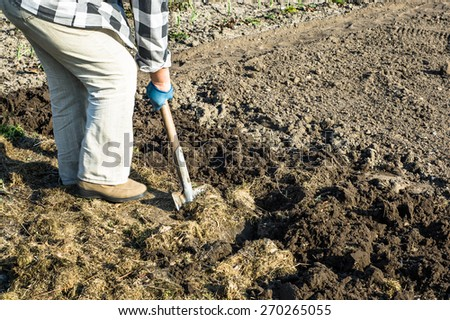 Woman digs her garden with shovel at spring