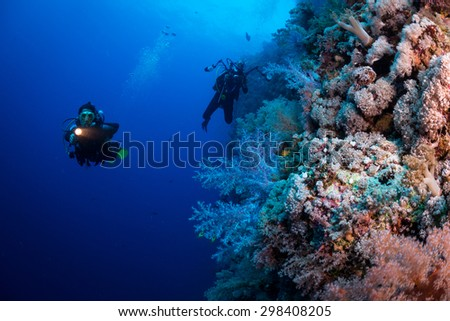 Woman diver explores reef, Ruqia Island, Red Sea, Egypt