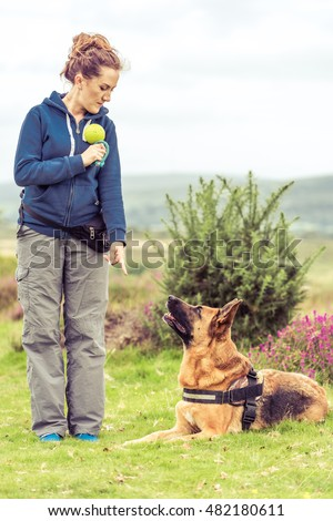 woman dog trainer and dog in park training session