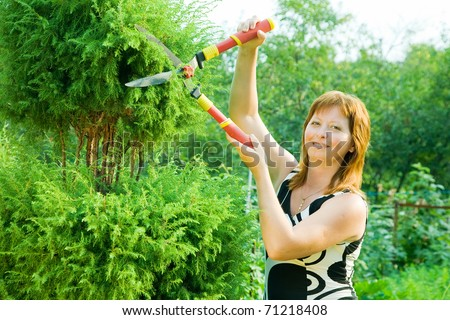 woman doing work in her garden in summer day - stock photo