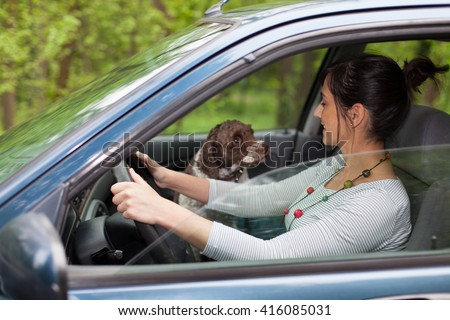 woman driving car with a dog  - stock photo