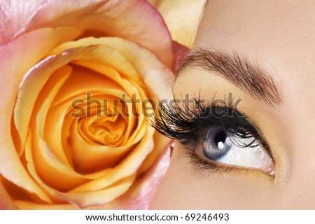 Woman eye and rose - stock photo